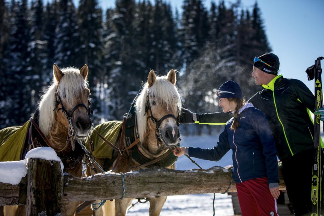 Pferdeschlitten und Langläufer