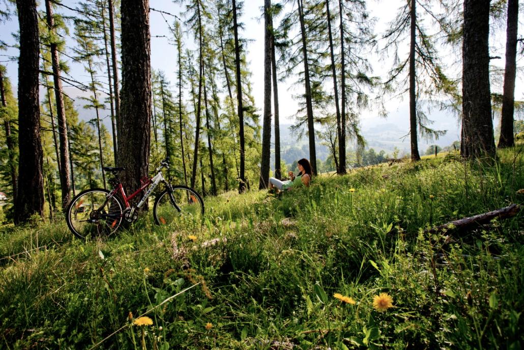 Mit dem Mountainbike durch den Wald